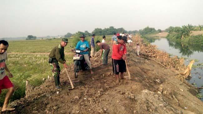 Babinsa Pos Ramil Mojoanyar Bersama Warga Karya Bakti Benahi Tanggul Sungai Sadar