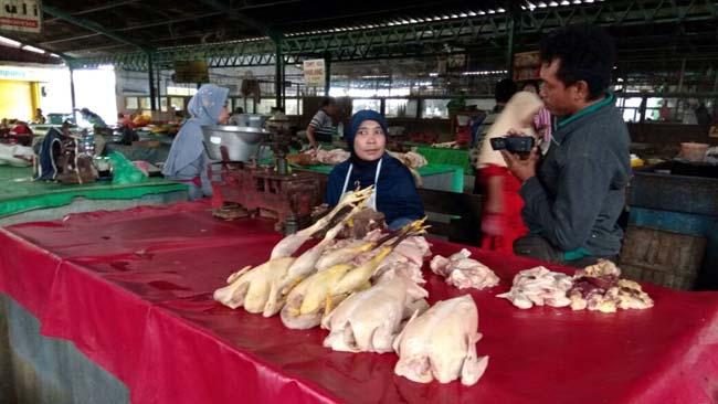 Harga Daging Ayam di Situbondo Merangkak Naik