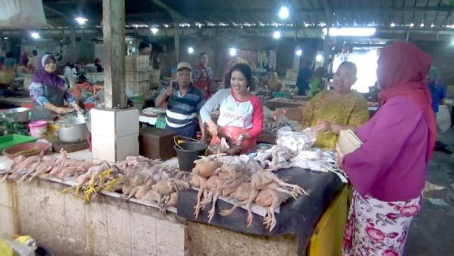 Makin Langka, Harga Ayam Potong Tembus Rp 45.000, Ayam Kampung Rp 60.000 Per Kilogram