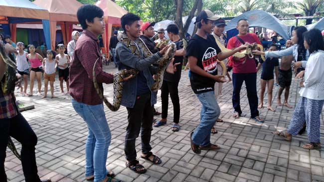 Wisata Kolam Renang Jedong Cangkring, Manjakan Pengunjung bersama Satwa