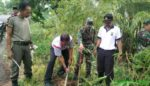 Koramil Klabang Bondowoso Gelar Penghijauan di Ruas Jalan Provinsi