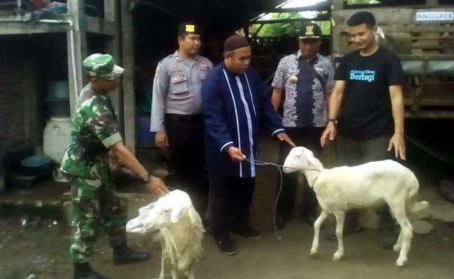 Dompet Dhuafa Launching Program Kampung Ternak dan Budidaya Kerapu Kerapu di Situbondo